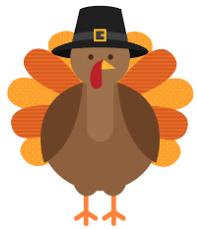 Thanksgiving turkey wearing pilgrim hat