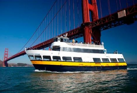 blue and gold ferry service under golden gate bridge