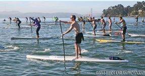 Stand Up Paddle Boarders on the Bay