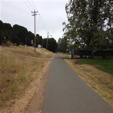 Tib Pathway